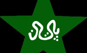 Top-Pakistan-Cricket-Records