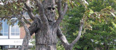 walking-tree